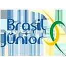 Uma empresa Brasil Júnior